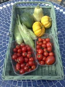 Autumn veg harvested today, squashes, sweetcorn and tomatoes